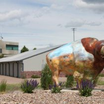 Airport_buffalo