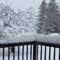April_snow003