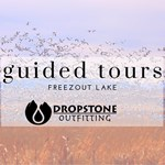 Great Goose Migration - Guided Tours of Freezout Lake Thumbnail