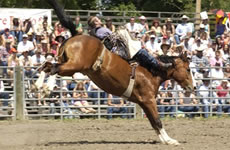 80th Annual American Legion Rodeo