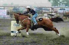 Rodeos Central Montana