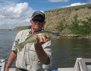 Walleye Fishing Fresno Reservoir, Montana