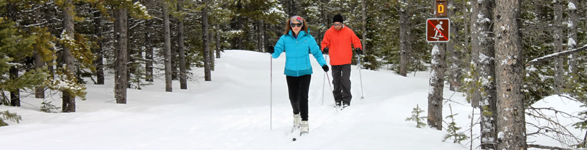 Central Montana Cross Country Skiing