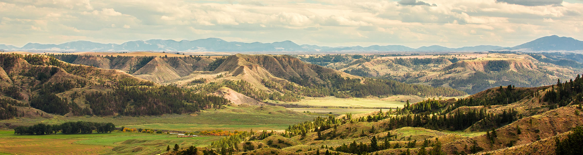 Vacation Planning & Tours